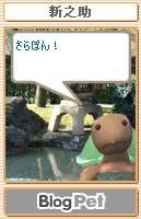 shinnosuke.jpg