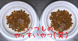R0013748.JPG